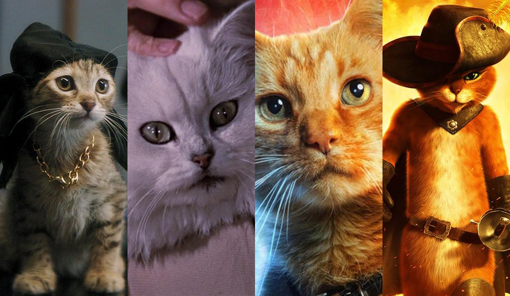 De Jones ('Alien') a Goose ('Capitana Marvel'): 11 gatos de cine que son unos perfectos robaescenas